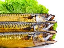 Smoked fish on plate close up mackerel stock photos