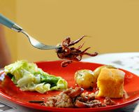 Appetizing squid on fork Stock Photography