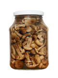 Appetizing tinned mushrooms in glass jar.Isolated. Stock Photo