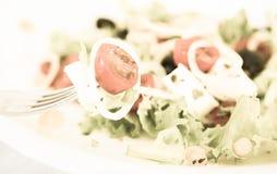 Tomatoes onion mozzarella on fork royalty free stock photo