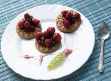 Appetizing vanilla cookies stock image