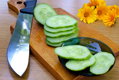 Appetizing Young Green Cucumber Royalty Free Stock Photography