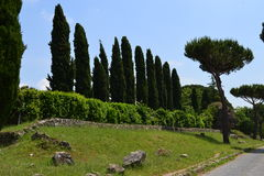 Appia antica Royalty Free Stock Photo