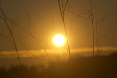 Appia del parque de la puesta del sol viejo Imagen de archivo