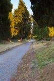 Appian sposób w Rzym, Włochy (Przez Appia) Zdjęcie Stock