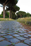 Appian Way (Via Appia) in Rome, Italy. Via Appia Antica (Old Appian Way) was once one of the world's most important roads and the most famous of all the roads Royalty Free Stock Photos