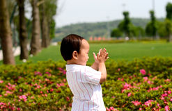 Applådera för barn Fotografering för Bildbyråer