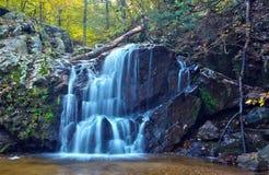 Applådera skogsmarkvattenfallet och nedgånglövverk Royaltyfri Fotografi