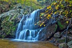 Applådera skogsmarkvattenfallet och nedgånglövverk Arkivfoto