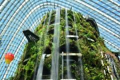 Applådera vattenfallet Royaltyfri Fotografi