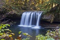 Applådera vattenfallet med lövverk runt om ram av bilden royaltyfria foton