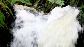 Applådera vattenvattenfallet lager videofilmer