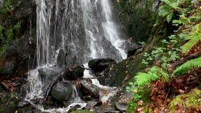 Applådera vattenvattenfallet stock video