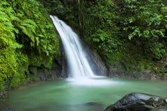 Applåderar hjälpEcrevissesvattenfallet, Guadeloupe Arkivbilder