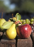 Apple和梨 免版税库存图片
