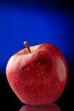 Apple在黑色和蓝色背景中 免版税库存照片