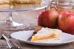 Apple堵塞馅饼。 免版税图库摄影