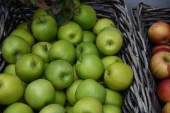 Apple果子 免版税库存照片