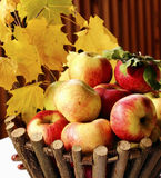 Apple篮子 免版税图库摄影