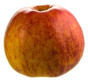 Apple红色 免版税库存照片