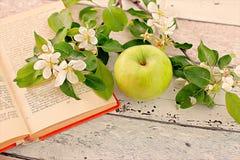 Apple Ñ  Ð ² ÐΜÑ 'Ð ¾ Ñ ‡ кР¾ Ð ¹ кР½ иР³ а Στοκ Φωτογραφίες