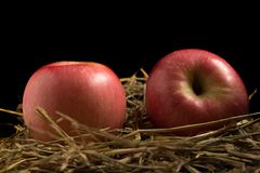 Apple άχυρο Στο ξύλο Μαύρη ανασκόπηση Στοκ Εικόνες