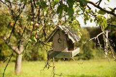 Apple-δέντρο και να τοποθετηθεί κιβώτιο Στοκ φωτογραφία με δικαίωμα ελεύθερης χρήσης