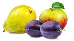 Apple, δαμάσκηνα και αχλάδια που απομονώνονται στο λευκό Στοκ φωτογραφία με δικαίωμα ελεύθερης χρήσης