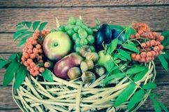 Apple, δαμάσκηνο, rowanberry στο καλάθι Στοκ Εικόνες