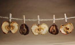 Apple και αχλάδια ξηρές με ένα clothespeg Στοκ Εικόνα