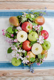 Apple και αχλάδια στη σύνθεση σφαιρών Στοκ Εικόνες