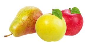 Apple και αχλάδι που απομονώνονται στο λευκό Στοκ φωτογραφίες με δικαίωμα ελεύθερης χρήσης