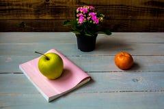 Apple και βιβλίο μανταρινιών Στοκ εικόνα με δικαίωμα ελεύθερης χρήσης