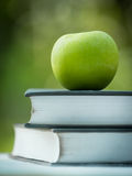 Apple και βιβλίο στη φύση Στοκ Εικόνες