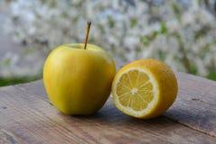 Apple και λεμόνι στον ξύλινο πίνακα στον κήπο Στοκ Εικόνα