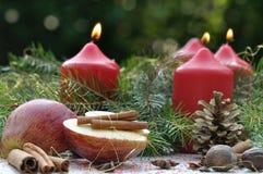 Apple και κανέλα για τα Χριστούγεννα Στοκ φωτογραφία με δικαίωμα ελεύθερης χρήσης