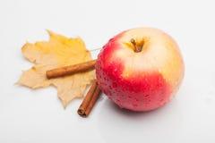 Apple και κανέλα με το φύλλο που απομονώνεται στο λευκό Στοκ φωτογραφία με δικαίωμα ελεύθερης χρήσης