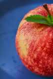 Apple και μέντα Στοκ Φωτογραφία