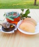 Apple και μέλι Στοκ Φωτογραφίες