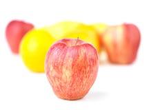 Apple και μίγμα φρούτων Στοκ φωτογραφίες με δικαίωμα ελεύθερης χρήσης