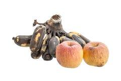 Apple και μπανάνα που μαραίνονται, απομονωμένος στο άσπρο υπόβαθρο Στοκ εικόνες με δικαίωμα ελεύθερης χρήσης