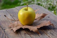 Apple και ξηρό φύλλο στον ξύλινο πίνακα στον κήπο Στοκ Φωτογραφίες