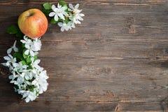 Apple και λουλούδια σε έναν πίνακα Στοκ εικόνα με δικαίωμα ελεύθερης χρήσης