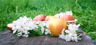 Apple και λουλούδια σε έναν πίνακα Στοκ εικόνες με δικαίωμα ελεύθερης χρήσης