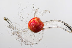 Apple και παφλασμός του χυμού που απομονώνονται στο γκρίζο υπόβαθρο Στοκ φωτογραφίες με δικαίωμα ελεύθερης χρήσης