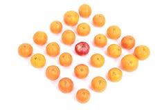 Apple και πορτοκάλια Στοκ φωτογραφίες με δικαίωμα ελεύθερης χρήσης