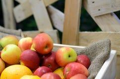 Apple και πορτοκάλι στο σωρό Στοκ φωτογραφίες με δικαίωμα ελεύθερης χρήσης