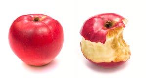 Apple και πυρήνας μήλων Στοκ Εικόνες