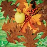 Apple και δρύινα φύλλα με τη σορβιά Στοκ Εικόνες