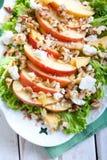 Apple και σαλάτα καρυδιών Στοκ Φωτογραφίες